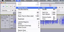 narration editing